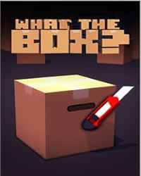 What the Box? Game Cover